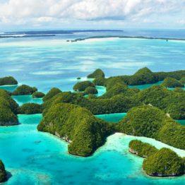 Oceania Island blue sea green flora